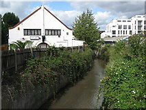 TQ3772 : The River Ravensbourne north of Allerford Road, SE6 by Mike Quinn