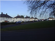 TQ2087 : Maple Grove, Kingsbury by David Howard