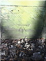 SK3686 : Benchmark on roadside wall pier of almshouses, Norfolk Road by Roger Templeman