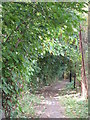 TQ3870 : Footpath by the River Ravensbourne east of River Park Gardens, BR2 by Mike Quinn
