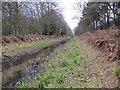 SU9356 : Dry canal towards the lock by Bill Nicholls