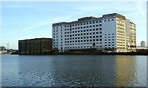 TQ4180 : Spillers Millennium Mills, Royal Victoria Dock by Julian Osley