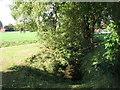 TQ3971 : The River Ravensbourne - Downham Branch, Shaftesbury Park (11) by Mike Quinn