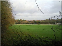 TQ4471 : Kemnal Manor Stables from Belmont Lane by Marathon