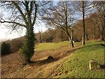 TQ2652 : Reigate Hill by Derek Harper