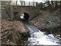 SJ3472 : Bridge/culvert under the lane to Shotwick by John Lord