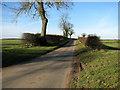 TG0627 : Brays Lane, Guestwick by Evelyn Simak