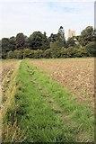 TL7448 : Footpath to Hundon Church by Bob Jones