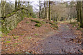 SD3492 : Bridleway on Breasty Haw by Tom Richardson