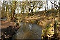 SJ6576 : Forge Brook by Galatas