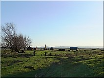 TQ7178 : Cliffe Marshes: the ruins at 'The Poplars', seen from the north-east by Stefan Czapski