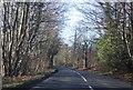 TQ6135 : B2169 approaching Bells Yew Green by N Chadwick