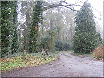 TM2649 : Footpath to Bredfield & Boulge Roads & entrance to Hasketon Manor by Geographer