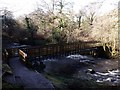 NS7883 : River Carron, Fankerton footbridge by Robert Murray