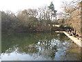 TQ4164 : The southernmost pond at Keston (7) by Mike Quinn