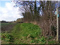 TM3561 : Footpath to Low Road by Adrian Cable