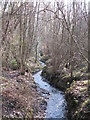 TQ4164 : The River Ravensbourne in Padmall Wood (3) by Mike Quinn