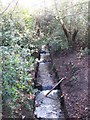 TQ4165 : The River Ravensbourne south of Croydon Road, BR2 by Mike Quinn
