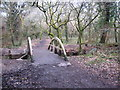 SW6032 : Footbridge over the stream in Godolphin Woods by Rod Allday