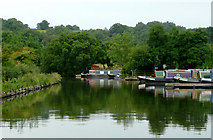 SP0272 : Worcester and Birmingham Canal at Alvechurch, Worcestershire by Roger  Kidd