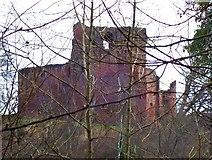 NS6859 : Bothwell Castle by Robert Murray