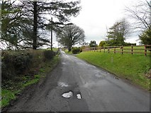H5956 : Glenhoy Road, Cleanally by Kenneth  Allen