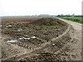 TG5002 : Track to Wheatcroft Farm, Bradwell by Evelyn Simak