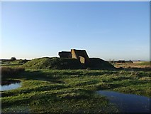 TQ7178 : Ruins of the explosives works, near Lower Hope Point (4) by Stefan Czapski