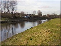 SD8100 : River Irwell, Lower Kersal by David Dixon