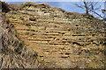 SK4963 : Lower Magnesian Limestone by Ashley Dace