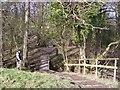 SD6837 : Steps and footbridge on path to Hurst Green by Raymond Knapman