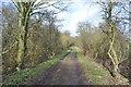 SK4764 : Rowthorne Trail by Ashley Dace