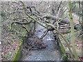 TQ2589 : Mutton Brook in Hampstead Garden Suburb by Nigel Cox