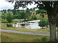 SU4266 : Parkland near Hamstead Marshall (2) by Stephen Richards