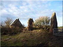 NT6281 : Rural East Lothian : Ruin on Northern Edge Of Brownrig Wood, Tyninghame by Richard West