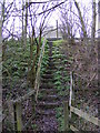 TM3763 : Footpath steps to the A12 Saxmundham Bypass by Adrian Cable
