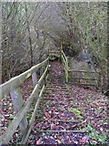 TM3763 : Steps of the footpath to Grove Farm & the B1119 Rendham Road by Adrian Cable
