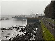 SJ3681 : River Mersey, Eastham Ferry by David Dixon