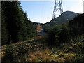 NN2125 : Gap through forestry along power transmission line by Trevor Littlewood