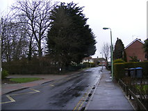 TM3763 : Seaman Avenue, Saxmundham by Adrian Cable