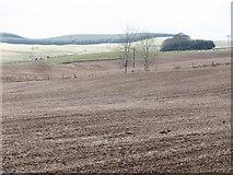 NO2150 : Winter fields, Fyal by Richard Webb