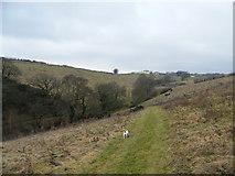 SS8827 : Footpath from Chilcott Lane towards Chiltons by John Courtney