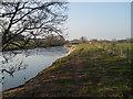 NY6324 : River Eden by David Brown