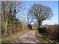 TM3770 : Hollow Lane (New Road), Sibton by Adrian Cable