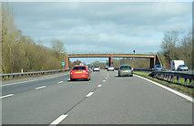 ST0104 : M5 near Westcott by Andrew Hackney