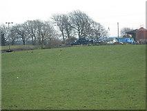 NS9864 : Pasture: Blackburn Mains by Jim Smillie