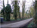 TM3969 : Footpath to Woodhill Farm & entrance to Hall Farm by Adrian Cable