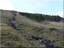 NN2319 : Forest patch and a minor burn in Glen Fyne by Richard Law