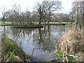 TQ2774 : Bolingbroke Stock Pond, Wandsworth Common by Marathon