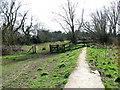 TG2105 : Concrete dyke in Marston Marsh, Norwich by Evelyn Simak